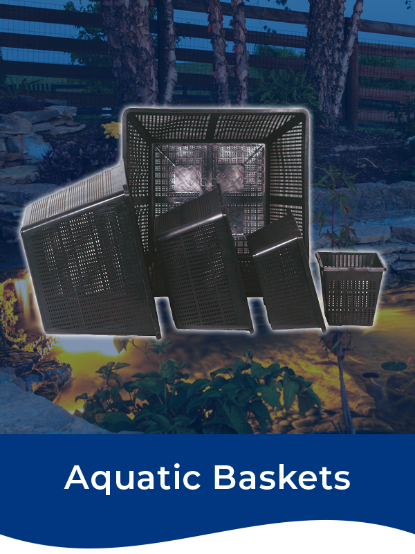 Bermuda Aquatic Baskets