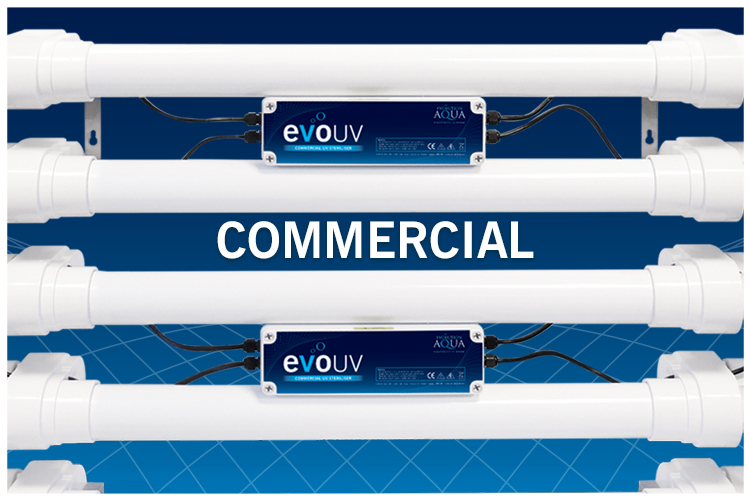 EA Commercial