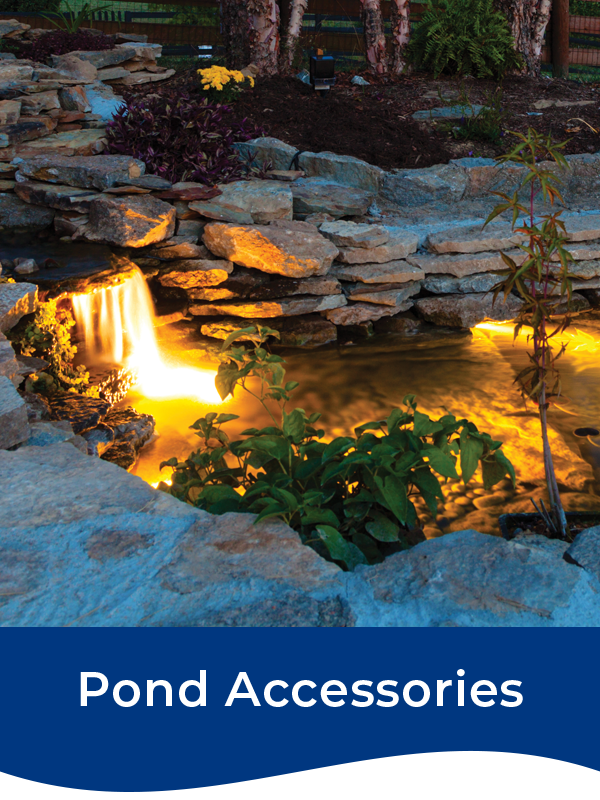 Bermuda Pond Accessories