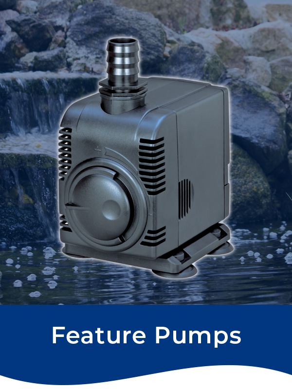 Bermuda Feature Pumps